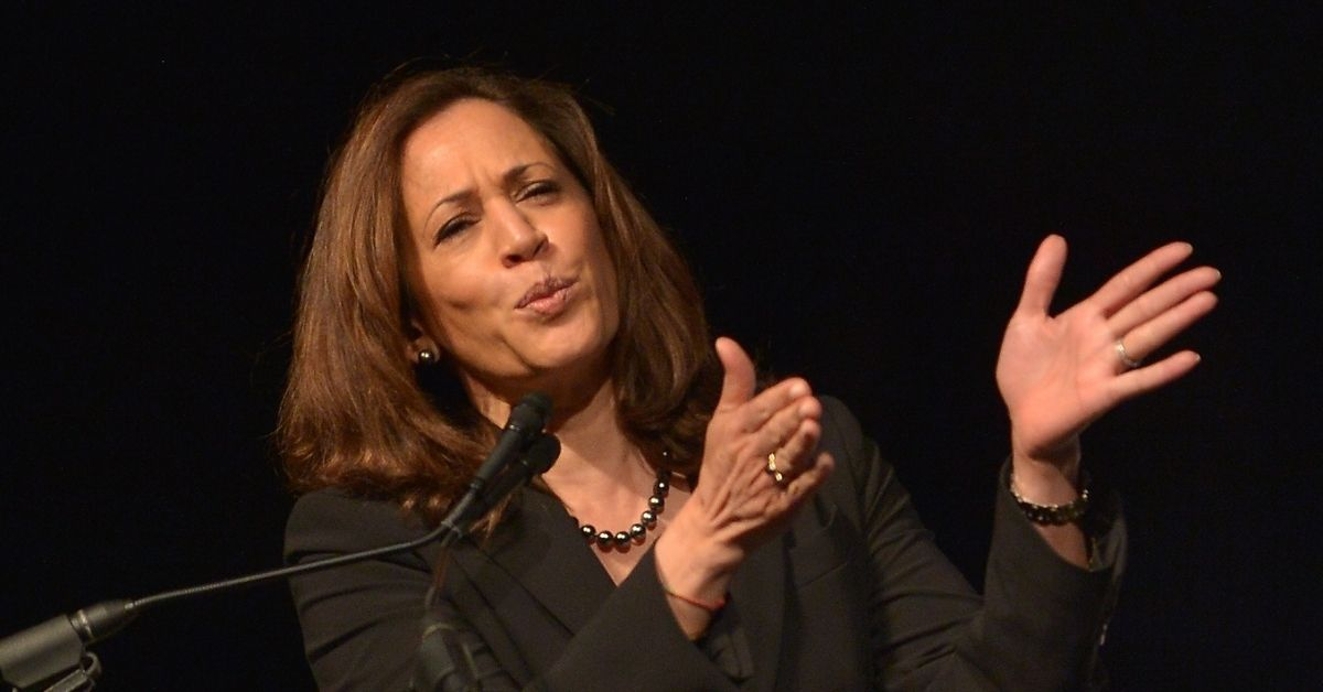 WATCH: Wanted Man Busted With Guns And Ammo In Front Of VP Kamala Harris's House
